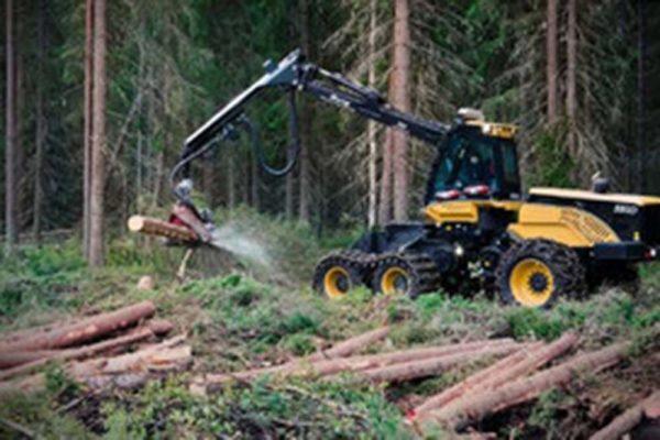 Holz Berner GmbH aus Friedburg – Ihr Spezialist für Holzschlägerung, Holzrückung & Biomasse
